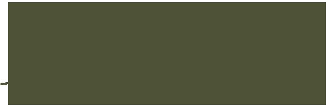 poderesaranna-retina-logo-verde
